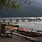 Photo of Lake Crescent Lodge