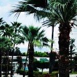 Bild från Hasdrubal Thalassa Hotel & Spa Port El Kantaoui