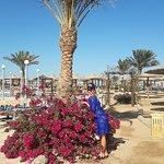 Photo of Nubia Aqua Beach Resort
