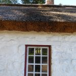 Thatched roof of blacksmith shop