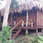 Foto de Lamanai Outpost Lodge