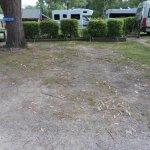 Grassed site?