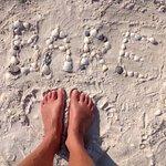 Photo of Barefoot Beach Preserve