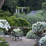 Zdjęcie Villa della Pergola