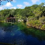 Photo of Cenote Jardin del Eden