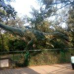 dinosour park2