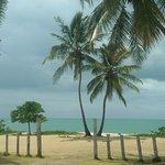 Photo of Coroa Vermelha Beach