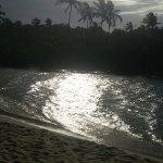 Foto de Nativos Beach