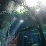 Photo of Parque Explora
