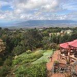 Photo of Kula Lodge