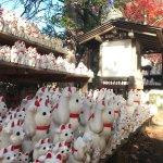 Photo of Gotokuji Temple