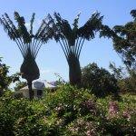 Photo de Jardin Botanique de Deshaies