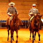 Photo of Caballerizas Reales de Cordoba