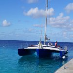 Photo of Woodwind Sailing & Guided Snorkel