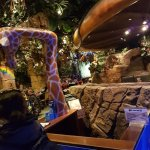 Rainforest Café Foto