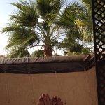Riad Vert Marrakech Photo