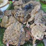Frogs in net bags