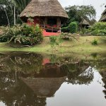 Foto de Napo Wildlife Center Ecolodge