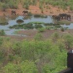 Foto de Victoria Falls Safari Lodge