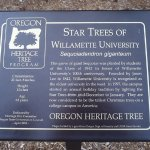 Photo of Willamette University