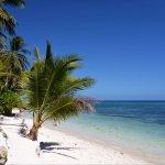 ภาพถ่ายของ Island View Beachfront Resort