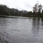 At Kodaikanal lake