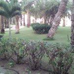 Photo of Iberostar Club Boa Vista