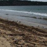 Keraton Jimbaran Beach Resort resmi