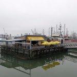 Pajos on the Wharf