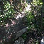 Sentier abrupte du Pic-Champlain