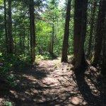 Sur le sentier de Le Pic-Champlain
