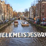 Zdjęcie Amsterdam Photo Safari