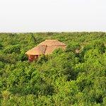 Photo de Buffalo Safari Lodge