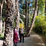 Jardín Artístico Nacional Huerto Del Cura