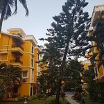 Photo of Adamo The Bellus Goa
