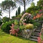 part of our 6 acres (2 hectares) garden