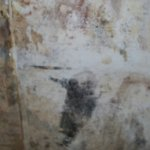 mold-pictures-004_large.jpg