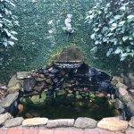 A lovely fountain