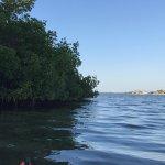 Opening into Sarasota Bay
