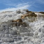 Partial View of Some of the Mammoth Hot Springs