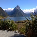 Ride to Milford Sound, anyone?