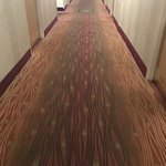 Filthy Hall Carpets