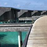 Bilde fra The St. Regis Maldives Vommuli Resort