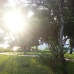 Photo of Lake Manyara Serena Lodge