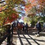 Mt. Takaosan Hiking Course