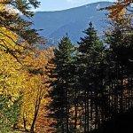 Photo de Mount Washington Observatory Weather Discovery Center