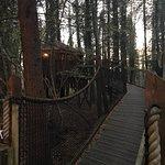 Φωτογραφία: Forest Holidays Forest of Dean, Gloucestershire