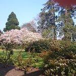 Parc du Thabor au printemps