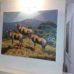 Framed photo of antelopes