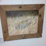 Framed photo of a cheetah